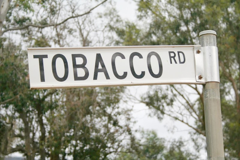 Street sign, tobacco Road, basketball